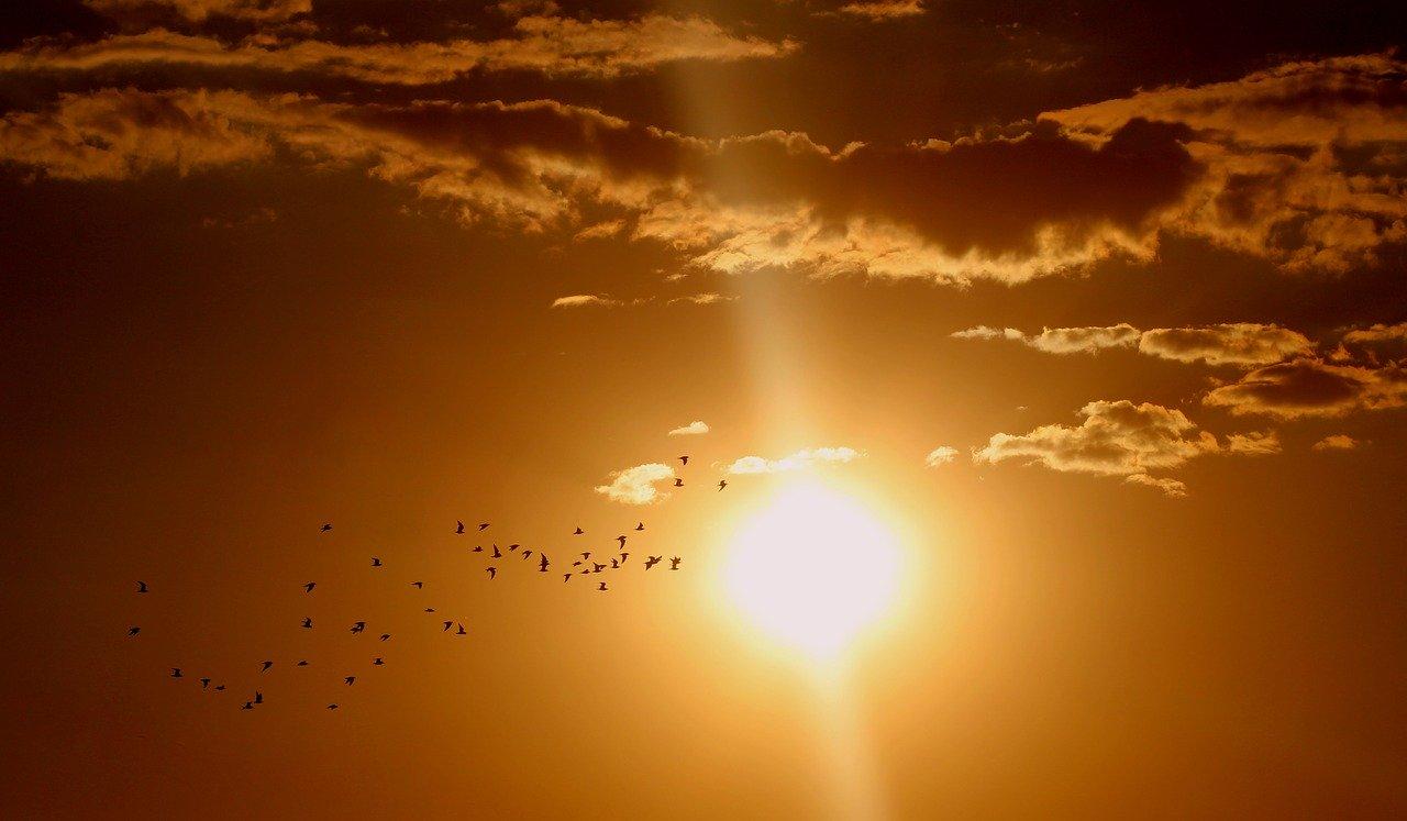 Sonnenenergie - MABEWO AG